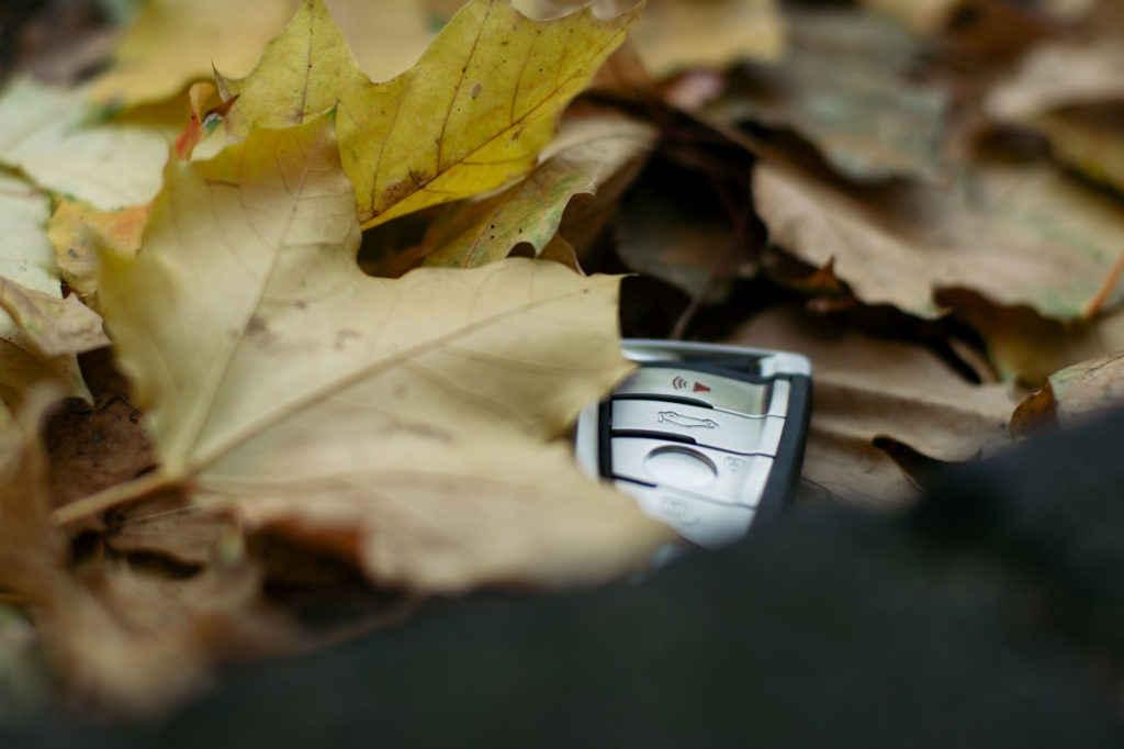 Verlorener Schlüssel im Herbstlaub